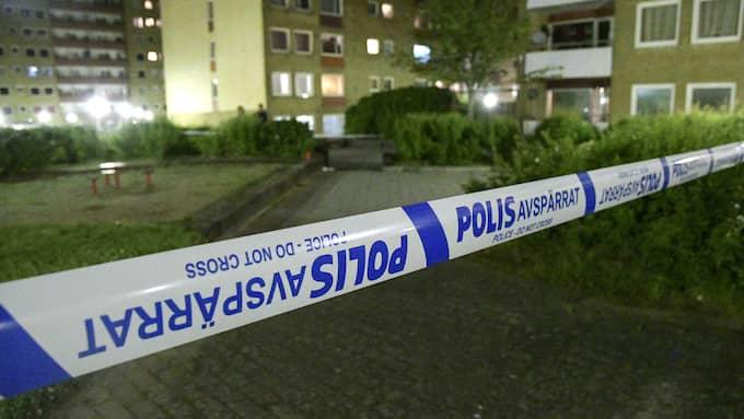 Människor med utrikes bakgrund är överrepresenterade i de kriminella gängen. Foto: JOHAN NILSSON/TT / TT NYHETSBYRÅN