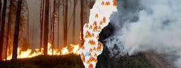 Skogsbränderna i Sverige – flera byar har panikevakuerats