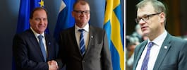 JUST NU: Finlands  regering avgår