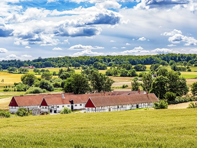 Österlen i Skåne har gott om sevärdheter och är aldrig så vackert som på våren och försommaren.