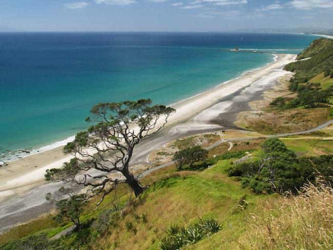Stranden i Mangawhai Heads.