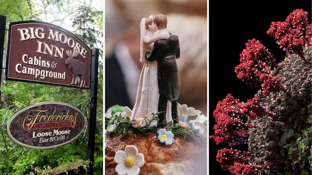 Bröllopet bröt mot 50-personersregeln – sju döda