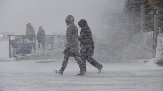 Vinterhataren kan andas ut! Snart kommer mildare väder. Foto: Stefan Söderström