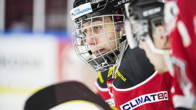 Martin Fehérváry, tidigare i Malmö Redhawks. Foto: Christian Örnberg / Bildbyrån