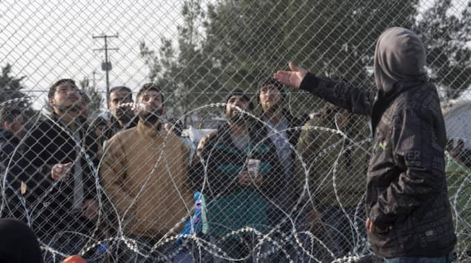 Många flyktingar sitter fast vid den grekisk-makedonska gränsen. Foto: Georgi Licovski / EPA / TT