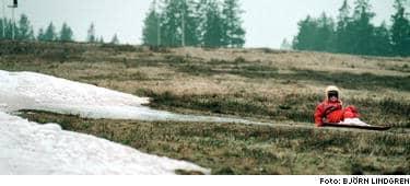 Snögränsen flyttar allt längre norrut. Om 20 år kan Vasaloppet vara ett minne blott.