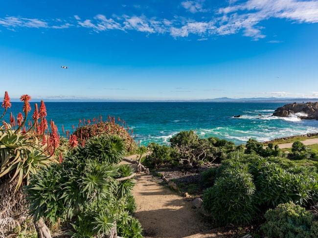 Monterey är den plats där den populära tv-serien Big Little Lies spelades in.