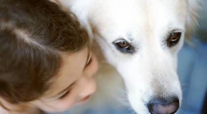 Hunden gör det lättare för barnet att prata och känna sig trygg under samtalet, säger Kurt Kotrschal, professor vid zoologiska institutet. Foto: COLOURBOX