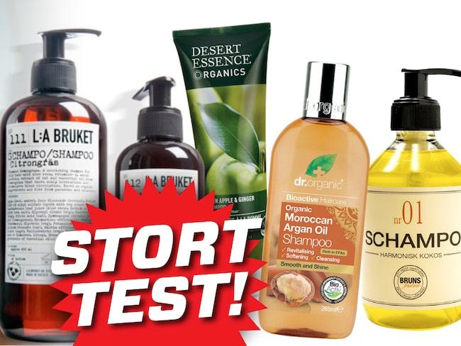bästa budget shampoo