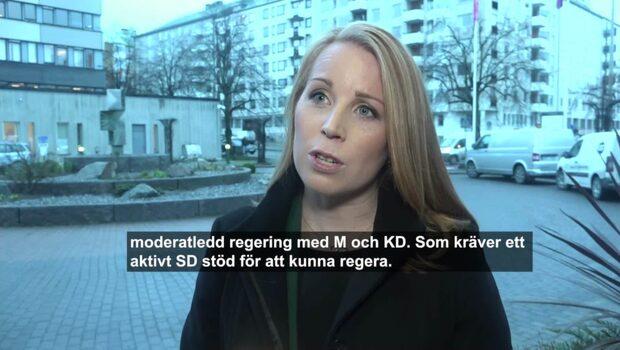 Lööfs hemliga strategimöte bakom ryggen på M och KD