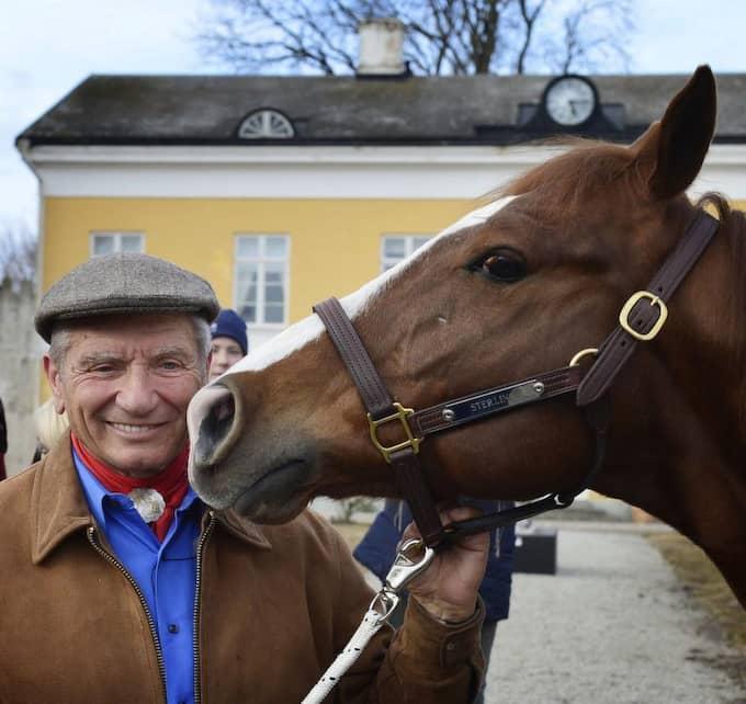 LEGENDAR. Monty Roberts visdom om hästars språk är grunden för hans metod Equs: gester, små rörelser, lätta tryck, belöningar i form av smekningar. Foto: Lasse Svensson