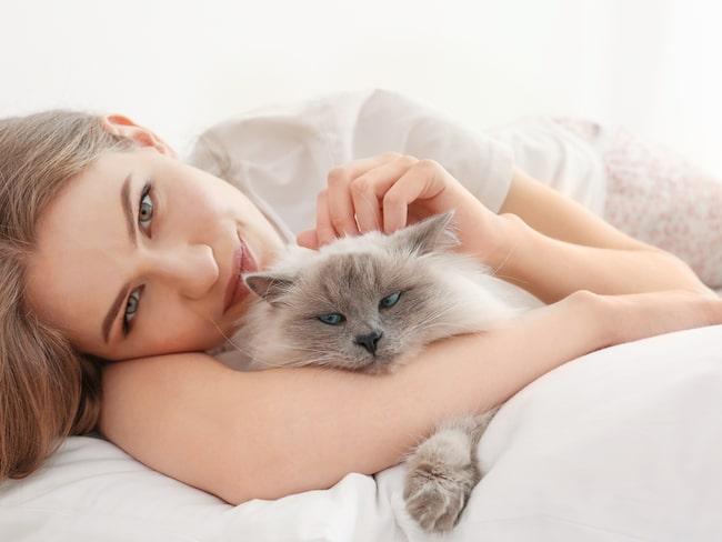 Här är elva anledningar till varför katter är bättre sambos än människor.