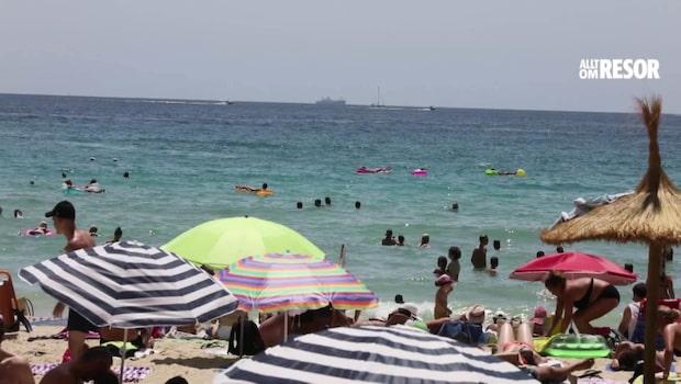 Mallorca stänger stränder – vattnet fullt med avföring