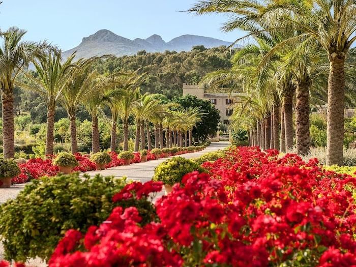 25 minuter från Palma ligger Castell Son Claret uppe bland bergen.