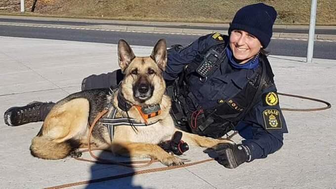 Andrea Hardie och Cruyffi har jobbit ihop sedan 2012. I helgen dog den omtyckta polishunden. Foto: Jörgen Björnstedt