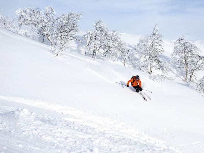 4fc31e83428 De svenska fjällen lockar allt mer när snön riskerar att tryta på flera  populära skidorter i