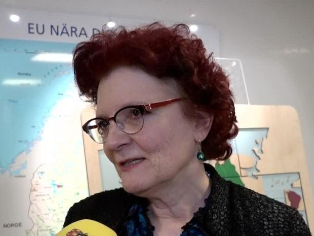 "Experten om coronaviruset: ""Européer har ingen anledning att oroa sig"""
