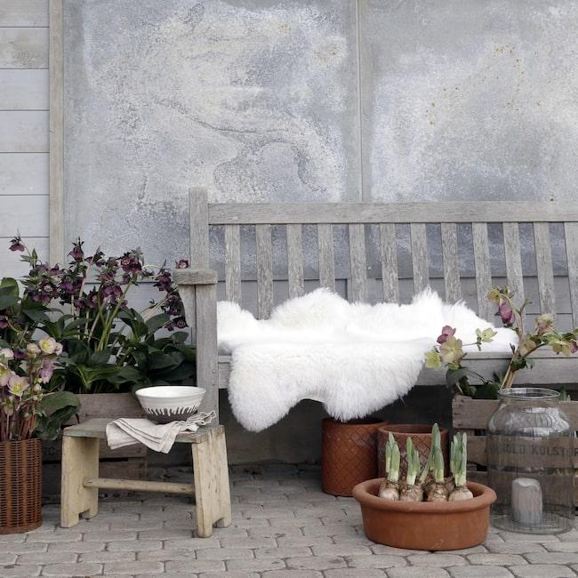 <span>20 % rabatt! Naturligt vitt och korthårigt fårskinn, 95–110 centimeter långt, 876 kronor. (Ordinarie pris: 1 095 kronor.) Klicka på plusset för att handla direkt i LEVA&BO:s webbutik!<br></span>