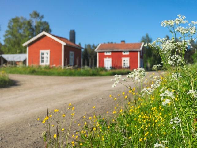 Från och med 1 juli går det att ansöka om radonbidrag.