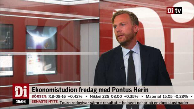 """Thulin: """"Småbolagen får det tufft innan valet"""""""