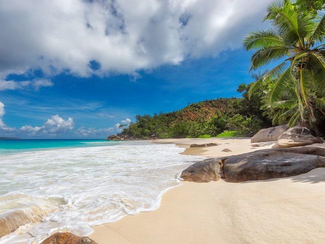 Seychellerna, ett semesterparadis med fina stränder.