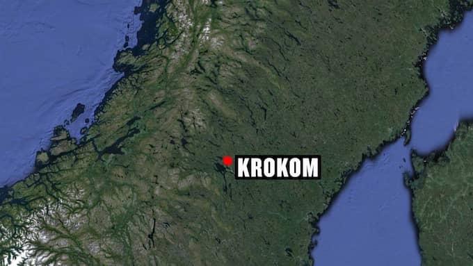 Björnen skadesköts norr om Krokom i Jämtland. Foto: GOOGLE MAPS