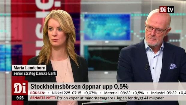 """Landeborn: """"Hatad sektor kan bli bubblare i år"""""""