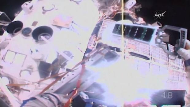 Astronauternas hisnande rymdpromenad - satte upp fågelspårare