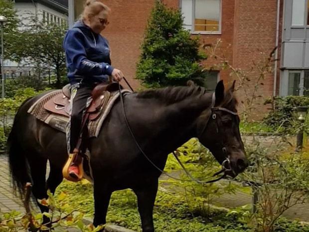 Här hälsar Emilies häst på matte – på sjukhuset