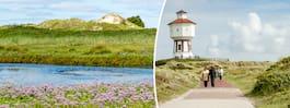 7 tips till Ostfrisiska öarna