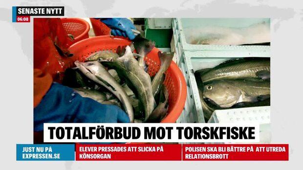 Förbud mot torskfiske i delar av Östersjön