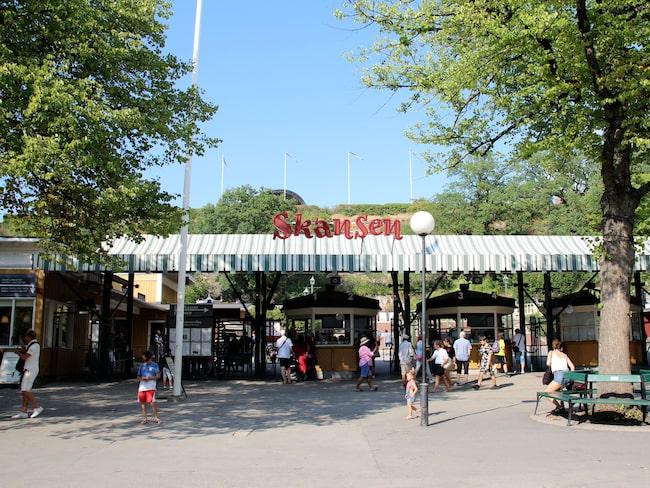 Skansen i Stockholm ger djuren isglassar i olika former.