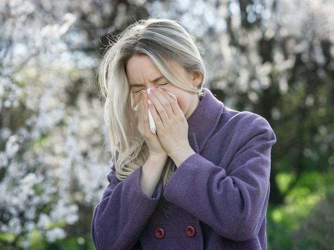 Det finns saker du kan göra för att minska på besvären och överleva årets pollensäsong.