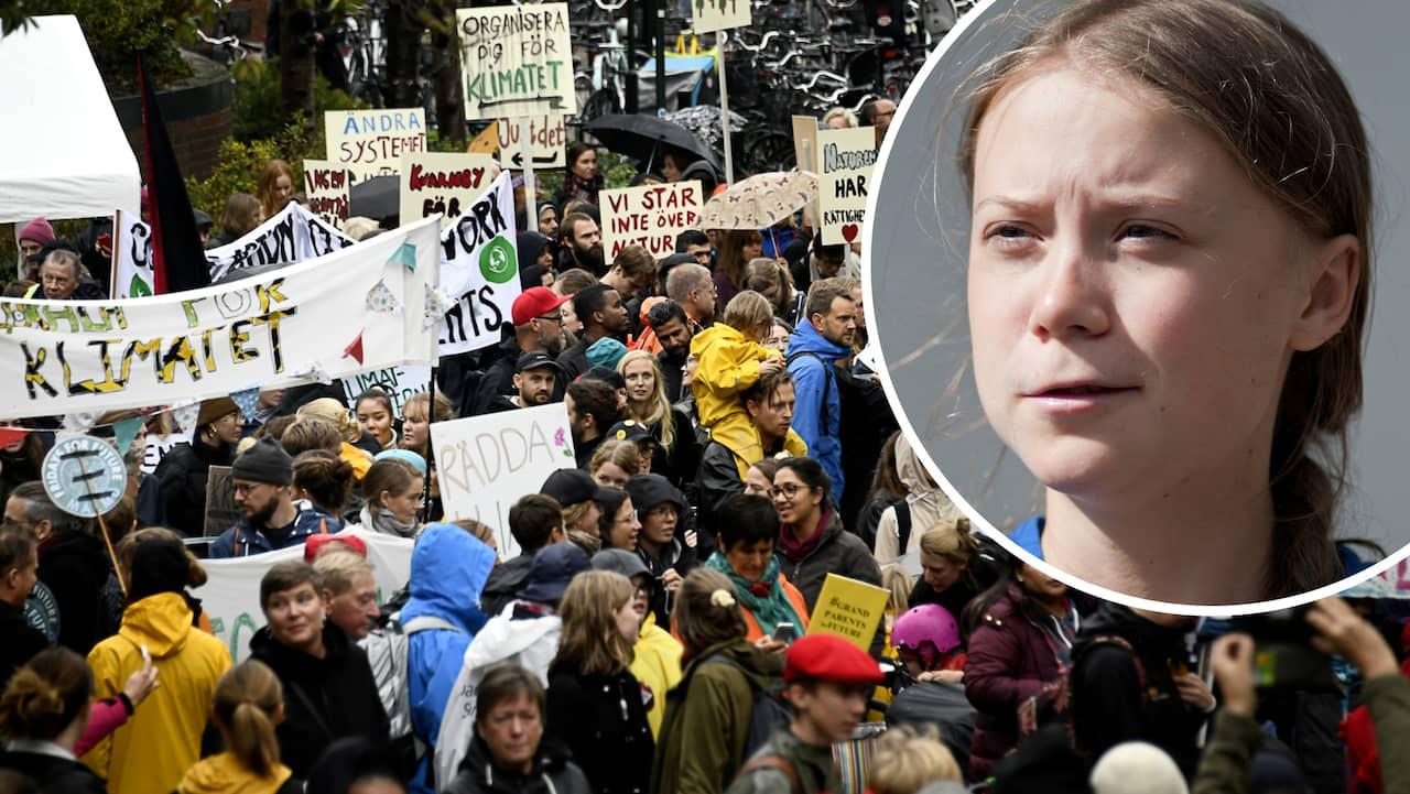 klimatstrejk 29 november