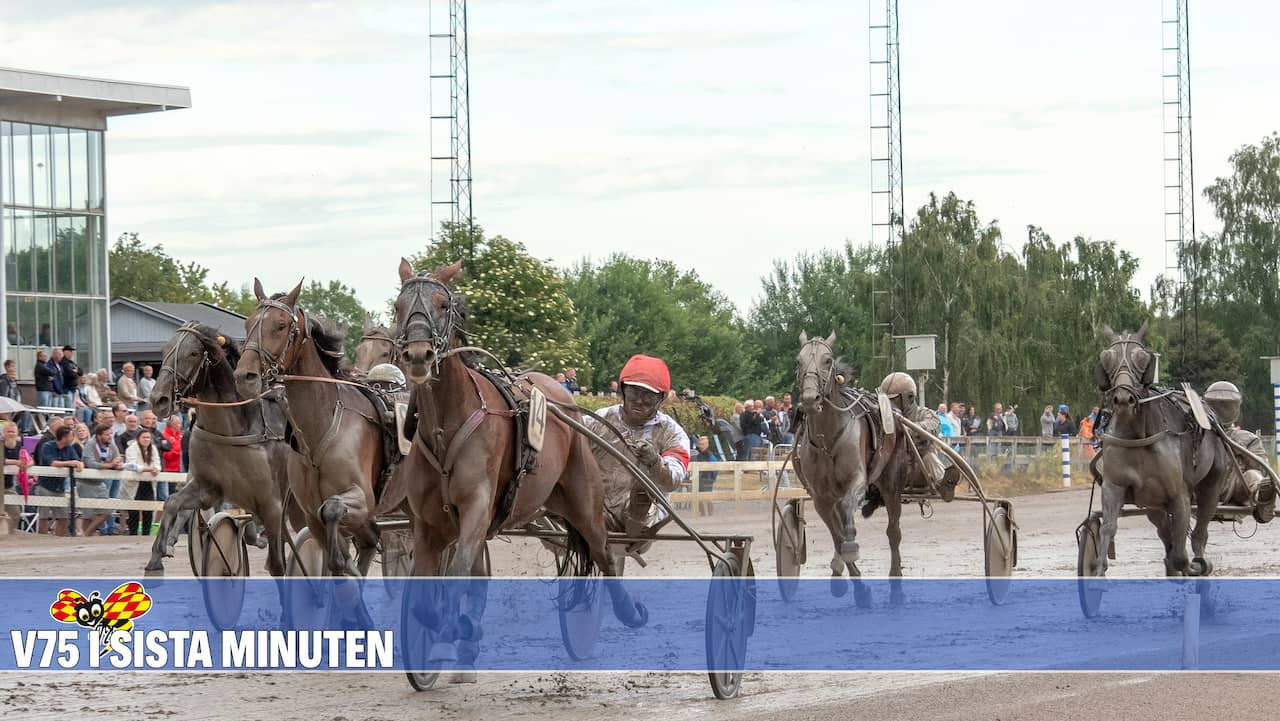 Sa ska han falla favoriten pa v75