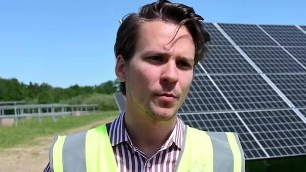Miljöpartiets Lorentz Tovatt om stödinsatser för solcellsenergi