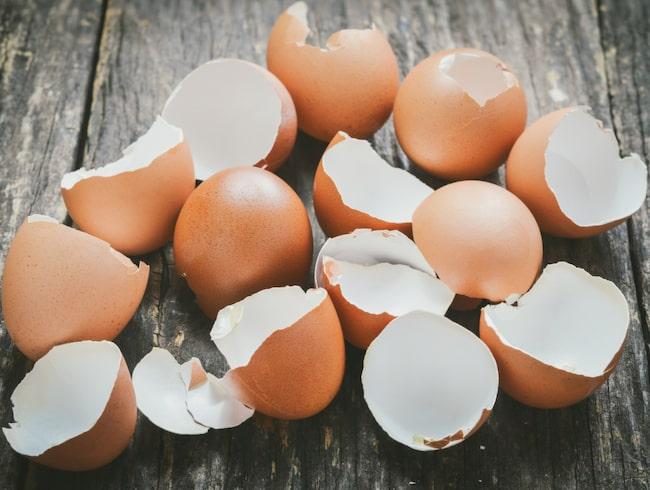 Ta vara på äggskalen i stället för att kasta bort dem!