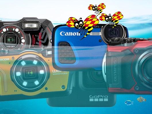 Tåliga kameror som klarar fina bilder under ytan.