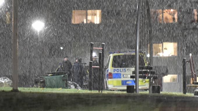 Upp mot 40 ungdomar jagas av polisen efter stenkastning. Foto: PONTUS STENBERG / PONTUS STENBERG