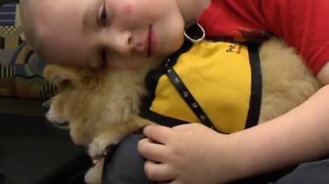 Bryce blir alltid glad när han får träffa hunden. Foto: CNN