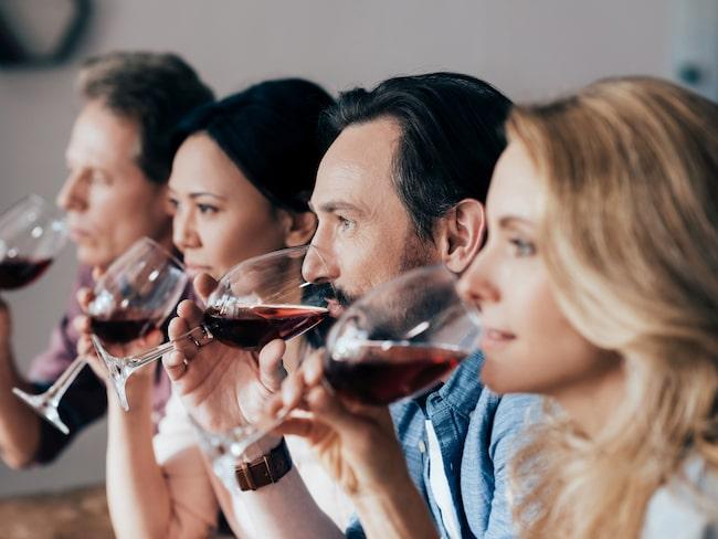 Studier på alkoholens påverkan på kroppen visar ett tydligt samband mellan kön och eventuella hälsoeffekter.