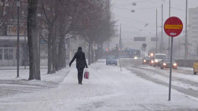 Under andra halvan av nästa vecka blir det kyligt väder. Foto: Lisa Sjöberg