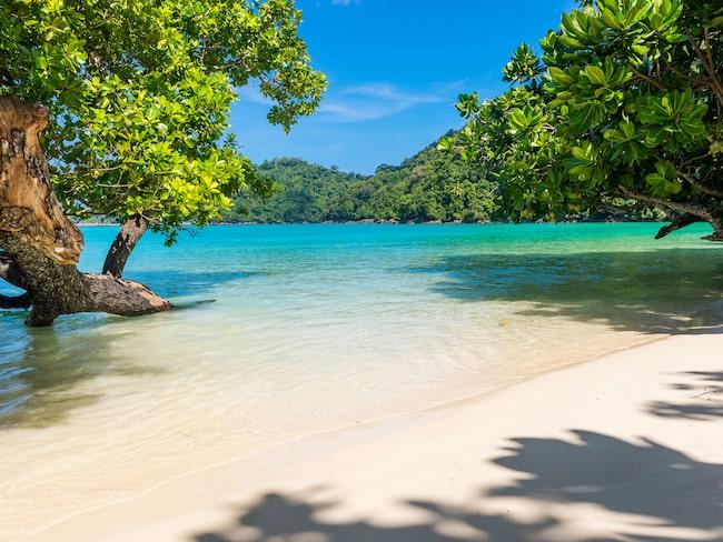 Rubens Kress & Mulholland har undersökt hur pass riskfyllda tretton populära turistmål är.