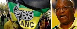 President vädjar till enighet i valet av nästa ANC-ledare