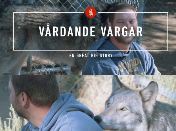 """""""Att leva med vargar räddade mitt liv"""""""