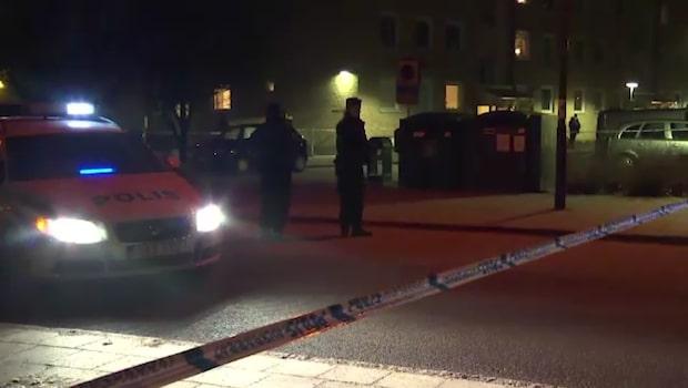 Skånsk knarkkartell sprängdes - ledaren jagas av spansk polis