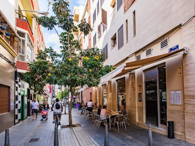 Restaurangen Allende ligger på kroggatan Calle Joaquin Costa.