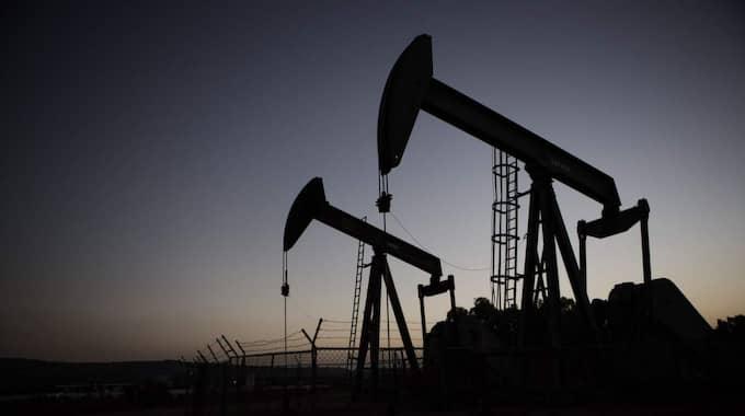 Världsmarknadspriset för råolja fortsätter falla – mot rekordlåga nivåer. Foto: Axel Öberg