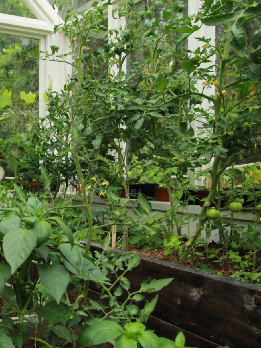 Plantera på tre sätt Leva& bo