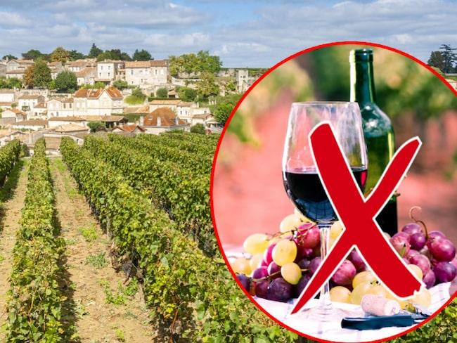 Bordeauxdistriktet drabbades förra året av förödande frost som förstörde hela 40 procent av 2017 års druvskörd.